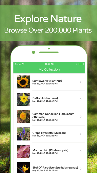 download PlantSnap Plant Identification apps 4