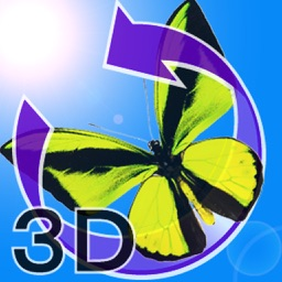 The 3D Insects II