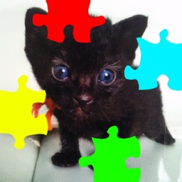 Cat's Jigsaw Puzzles