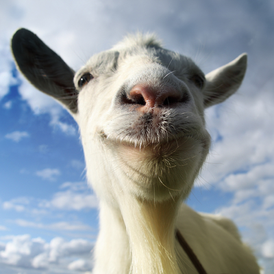 Goat Simulator Applications