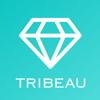株式会社トリビュー - 美容整形の写真口コミアプリ-トリビュー アートワーク