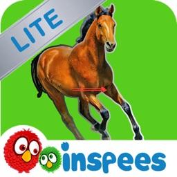 Pony Dash HD Lite