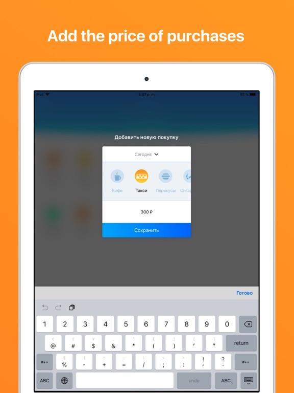 Ipad Screen Shot Spending Control 2