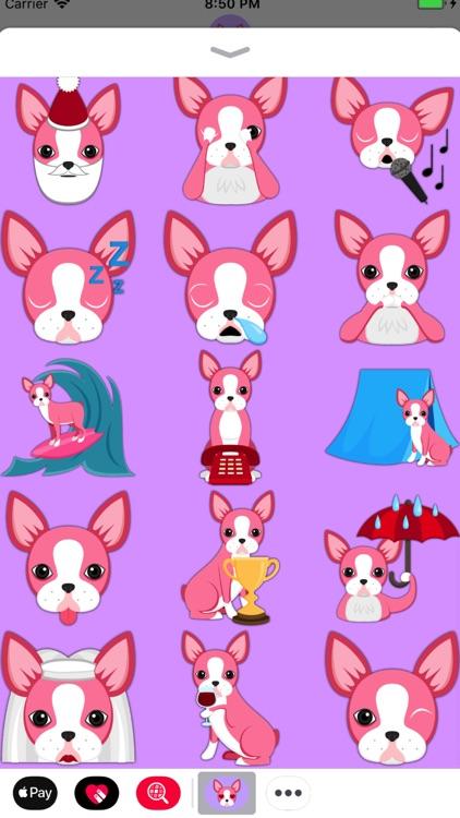 Valentine's Day Boston Terrier screenshot-3