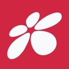 信天游3.0 icon
