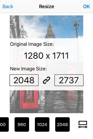 Image Resizer Pro - image crop screenshot 1