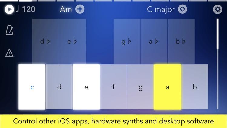 Navichord • chord sequencer screenshot-4