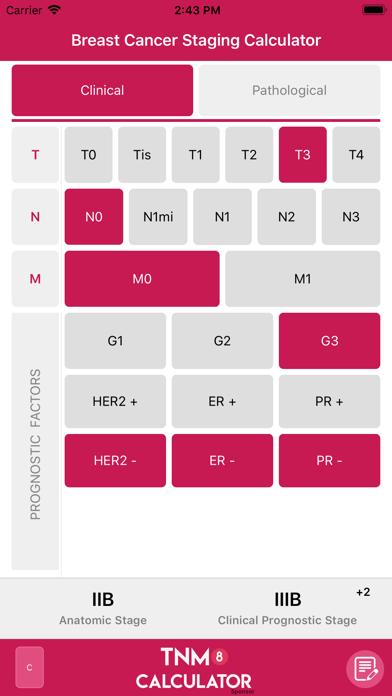 TNM8 Breast Cancer Calculatorのおすすめ画像3