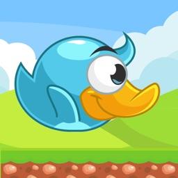 Baby Bird: Endless fun!