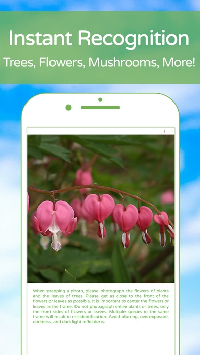 download PlantSnap Plant Identification apps 1