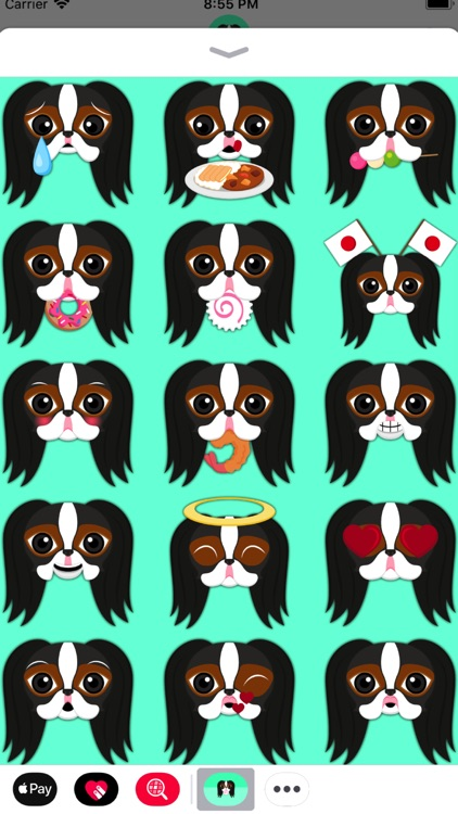 Tri Color Japanese Chin screenshot-3