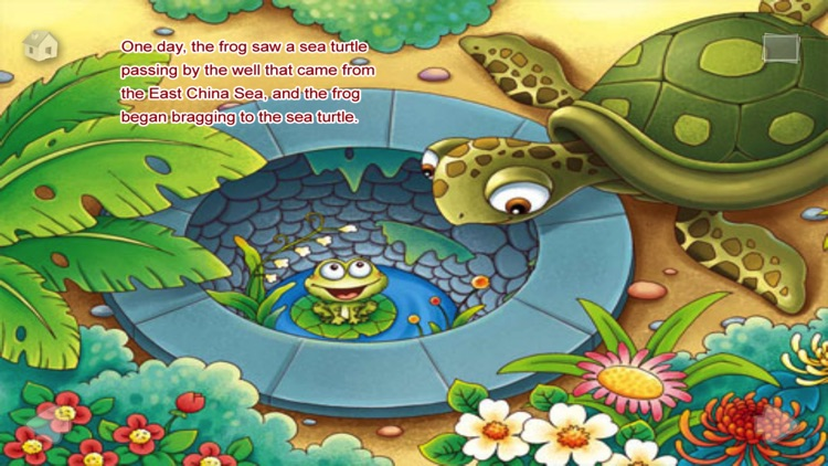A Frog Under the Well