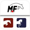 MF-Training