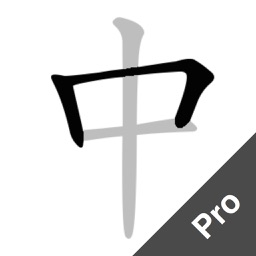 Chinese Strokes Order Pro - Improve writing skill