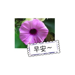 花园问候卡 stickers by wenpei
