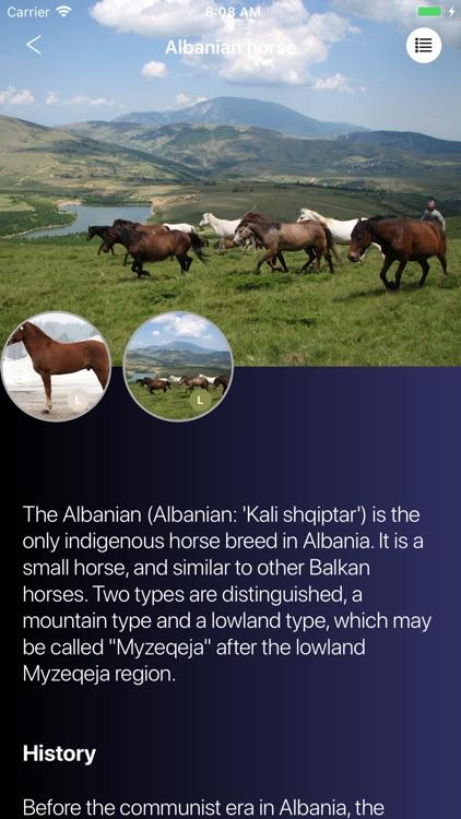 Horses 2.0