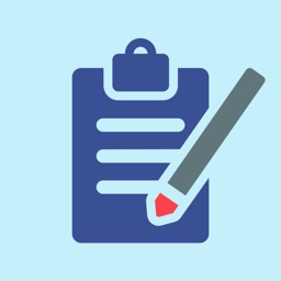 Punch List & Site Audit Report