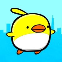 Codes for Cookie Bird Adventures Hack