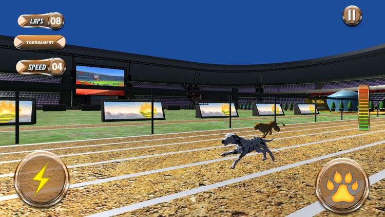 Greyhound Racing Tournament 2 screenshot-3