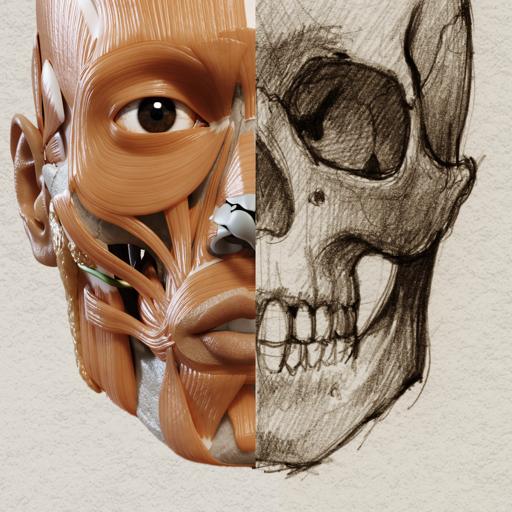 3D Анатомия для художников | Версия 1.2