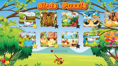 Fun Birds Puzzle - Kids Games