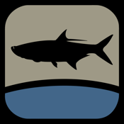 Fish The Gulf app review