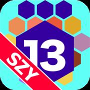 任天合 13 六边形 by SZY