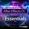 Essentials For After Effects - Nonlinear Educating Inc.