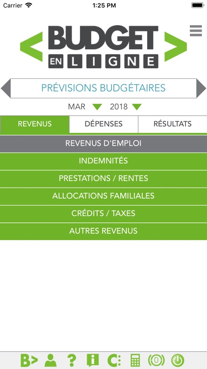 Budget en ligne screenshot-0