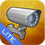 Трафик камеры+ Lite на пк