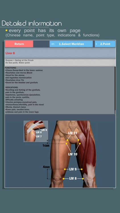 Easy Acupuncture 3D -FULL screenshot-4