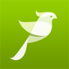 Bird Songs, Melodies & Sounds