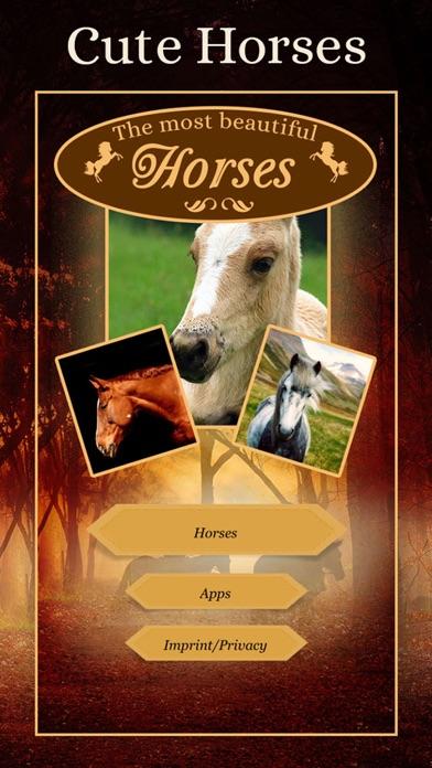 Horses - Wallpapers + Add Text screenshot 6