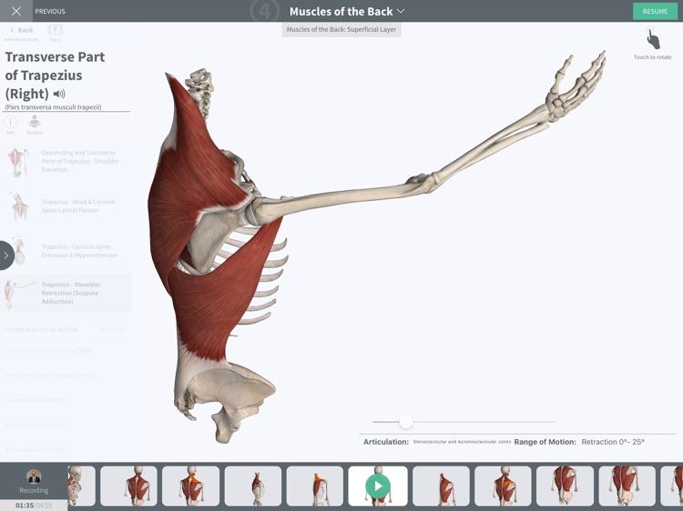 Undergrad Anatomy by Regions screenshot-4