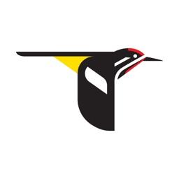 Merlin Bird ID by Cornell Lab