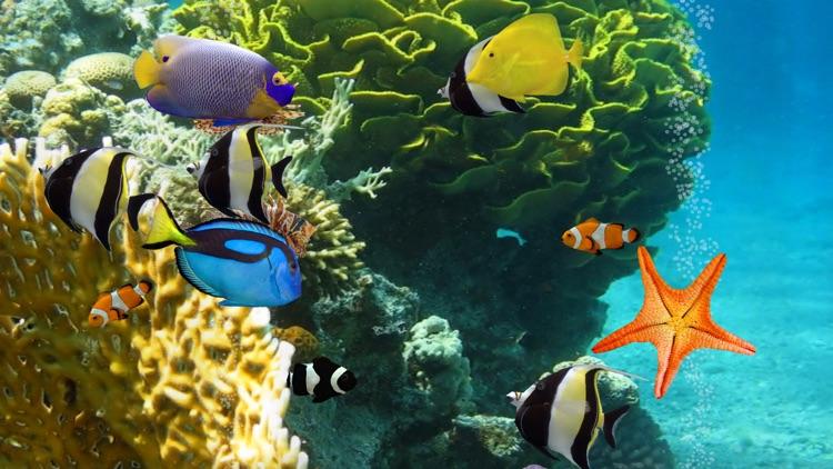 MyReef 3D Aquarium 2 HD