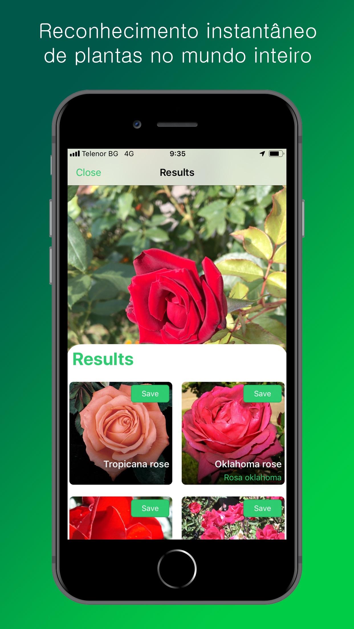 Screenshot do app PlantSnap Identificador Planta