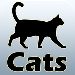 Cat breeds and guides