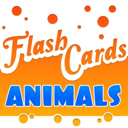 Flash Cards - Animals - HD