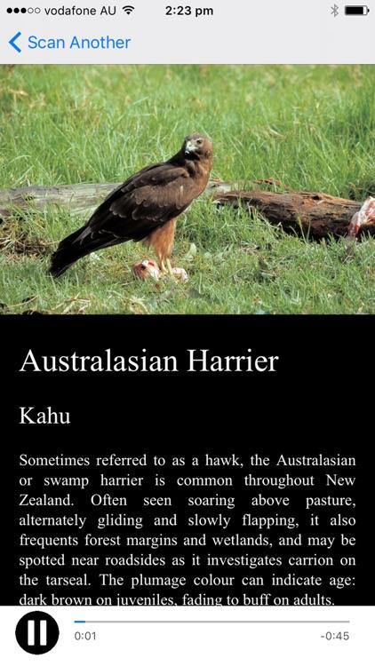 NZ Bird Calls
