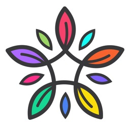 COLORS - Adult Coloring Book