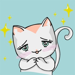 Chabby Cat