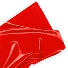 Activities of CRL Red Tape Challenge