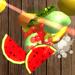 水果游戏达人 - 切水果游戏大全,切西瓜大作战休闲多多