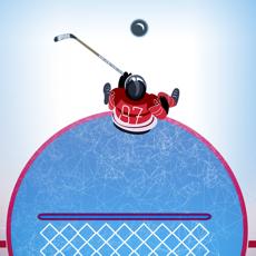 Activities of Hockey Goal Stopper PRO