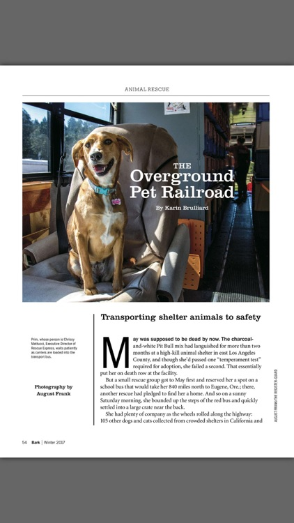 The Bark: dog culture magazine screenshot-2