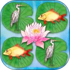Activities of Memory Pond