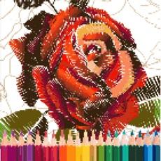 Activities of Rose Pixel Art