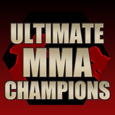 Activities of Ultimate MMA Champions