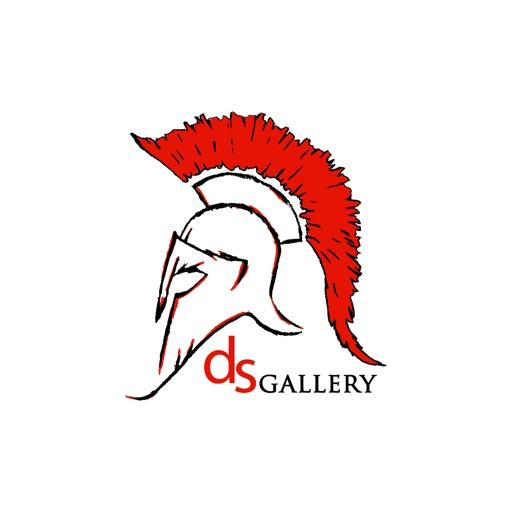 dsgallery.ch icon